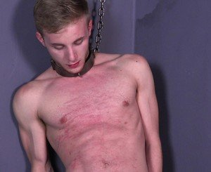 Hung Twink Bound Cock Sucking Cum Muscle Stud BDSM Gay